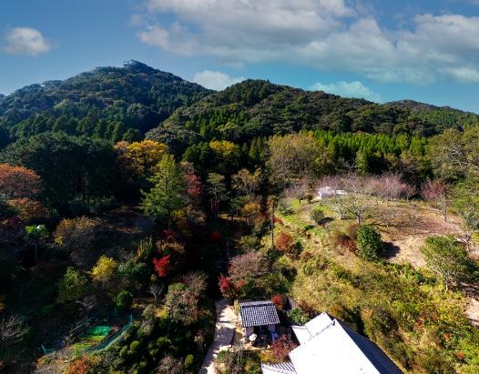 里山で学ぼうイメージ画像